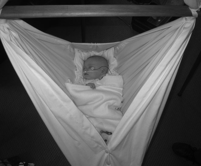 baby hammock natures sway medical study baby hammock study shows safe oxygen levels   natures sway  rh   blog naturessway co nz